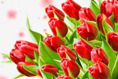 Привітання з 8 березня